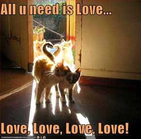 All u need is Love...  Love, Love, Love, Love!
