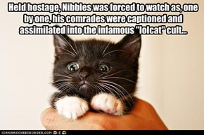 "Held hostage, Nibbles was forced to watch as, one by one, his comrades were captioned and assimilated into the infamous ""lolcat"" cult..."