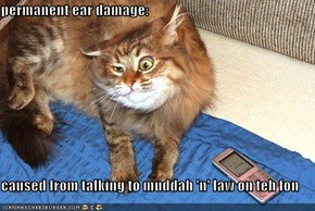 permanent ear damage:  caused from talking to muddah 'n' law on teh fon