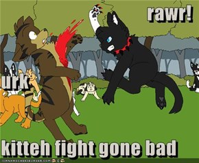 rawr! urk       kitteh fight gone bad