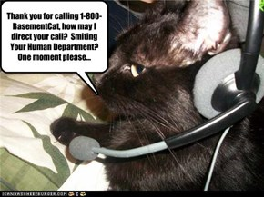Thank you for calling 1-800-BasementCat, how may I direct your call?  Smiting Your Human Department?  One moment please...