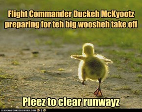 Flight Commander Duckeh McKyootz preparing for teh big woosheh take off
