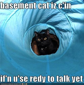 basement cat iz c'in  if'n u'se redy to talk yet