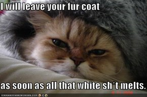 I will leave your fur coat  as soon as all that white sh*t melts.