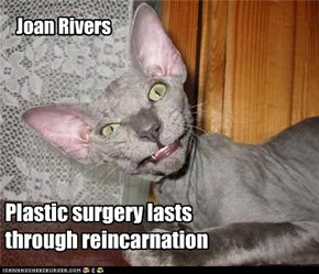 Plastic surgery lasts  through reincarnation