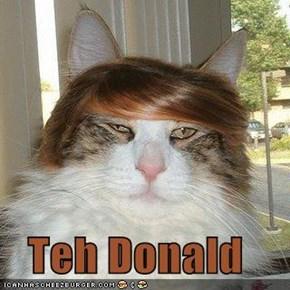 Teh Donald