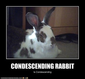 CONDESCENDING RABBIT