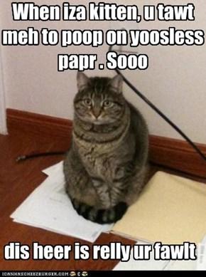 Poopin Kitteh