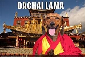 DACHAI LAMA