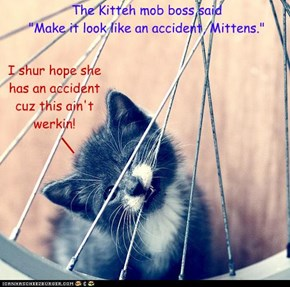 "The Kitteh mob boss said  ""Make it look like an accident, Mittens."""