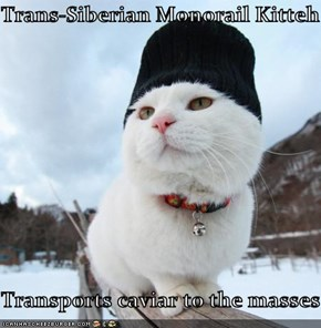 Trans-Siberian Monorail Kitteh  Transports caviar to the masses