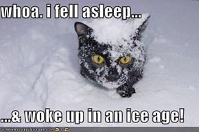 whoa. i fell asleep...  ...& woke up in an ice age!