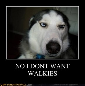 NO I DONT WANT WALKIES