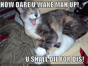 HOW DARE U WAKE MAH UP!  U SHALL DIE FOR DIS!