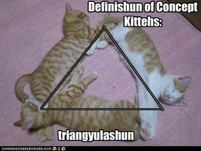 Definishun of Concept Kittehs: