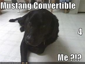 Mustang Convertible 4 Me ?!?