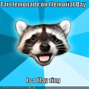 Tart lemonade on Memorial Day  Is a May zing