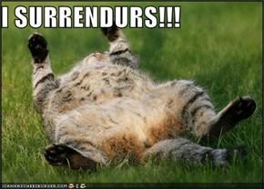 I SURRENDURS!!!