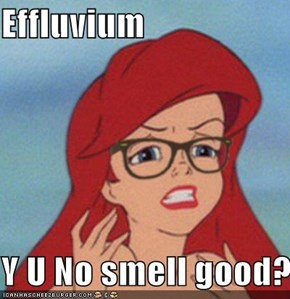 Effluvium  Y U No smell good?