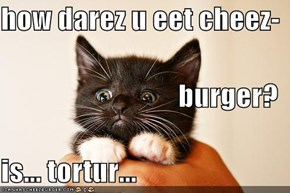 how darez u eet cheez- burger? is... tortur...