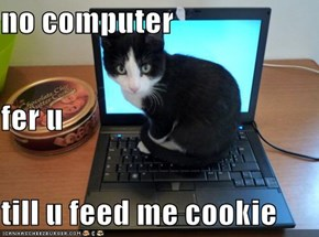 no computer fer u till u feed me cookie