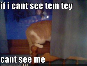 if i cant see tem tey   cant see me