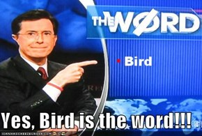 Yes, Bird is the word!!!