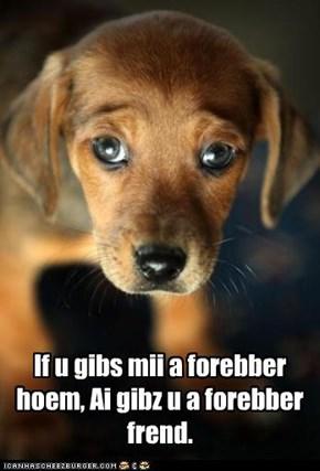 If u gibs mii a forebber hoem, Ai gibz u a forebber frend.