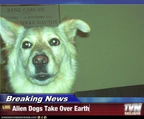 Breaking News - Alien Dogs Take Over Earth