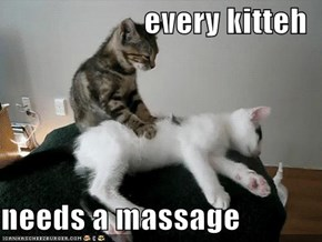 every kitteh  needs a massage