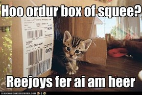 Box of Squee