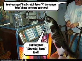"You've played ""Cat Scratch Fever"" 47 times now.  I don't have anymore quarters!"