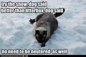 Dog said