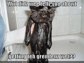 Wut didz wee tellz yoo abowt     getting teh gremlenz wet??