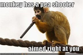 monkey has a pea shooter  aimed right at you
