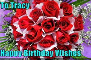 To Tracy  Happy Birthday Wishes