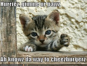 Hurriez, gimme ur pawz  Ah knowz da way to cheezburgerz