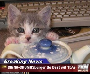 Breaking News - CINNA-CRUMBSburger Go Best wit TEAs