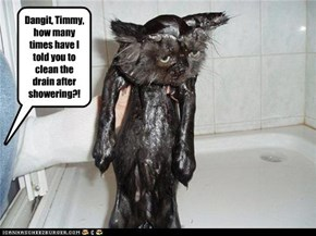 Dangit, Timmy, how many times have I told you to clean the drain after showering?!