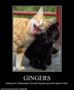GINGERS