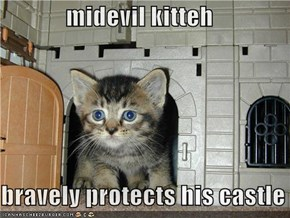 midevil kitteh  bravely protects his castle