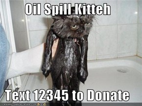 Oil Spill Kitteh  Text 12345 to Donate