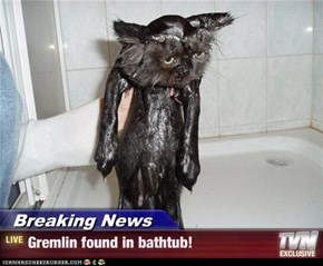 Breaking News - Gremlin found in bathtub!