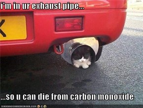 i'm in ur exhaust pipe...  ...so u can die from carbon monoxide