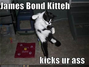 James Bond Kitteh  kicks ur ass