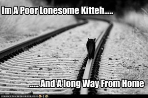 Im A Poor Lonesome Kitteh.....