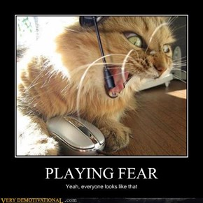 PLAYING FEAR
