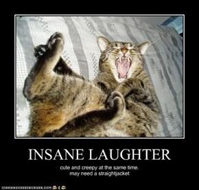 INSANE LAUGHTER