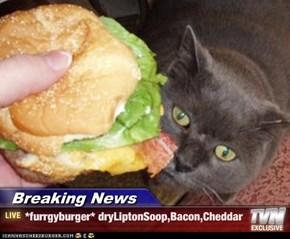 Breaking News - *furrgyburger* dryLiptonSoop,Bacon,Cheddar