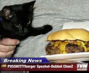Breaking News - PUSSKITTYburger Speshul-Dubbel CheeZ